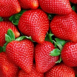 TPA - Sweet Strawberry