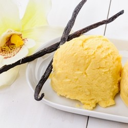 Vanilla Custard Flavor - TPA -