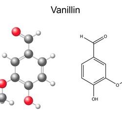 Vanillin 10 (PG) - TPA -