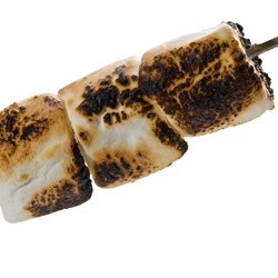 TPA - Toasted Marshmallow