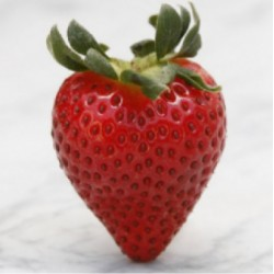 Strawberry - FW