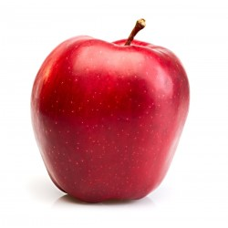 FA - Apple Stark
