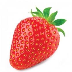 Juicy strawberry - Fa
