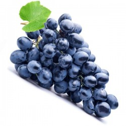 FA - Concord Grape - Fa