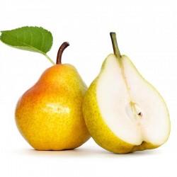 FA - Pear
