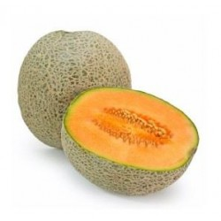 Cantaluope - FW-