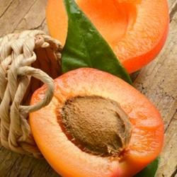 TPA - Apricot - damasco