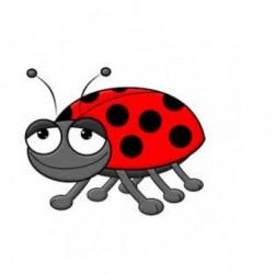 FW - Beetle Juice ( Jugo de escarabajo)