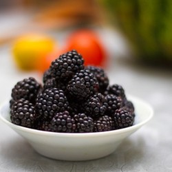 Boysenberry - TPA