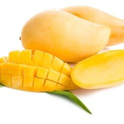 TPA - Philipine Mango