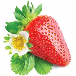 INW - Shisha Strawberry