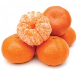 FA - Mandarin